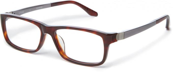 Spine SP1001 Glasses in Tortoiseshell