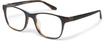Spine SP1002 Glasses in Black/Tortoiseshell