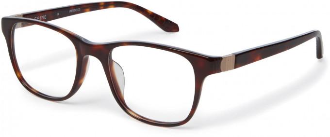 Spine SP1002 Glasses in Tortoiseshell