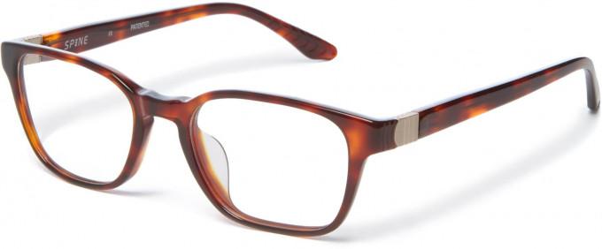 Spine SP1003 Glasses in Tortoiseshell