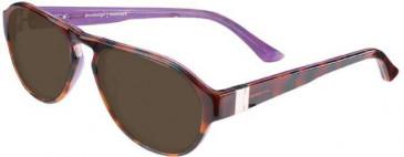 Prodesign Denmark 7615 sunglasses in Brown/Blue