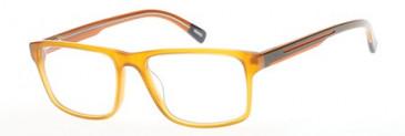 Gant GA3053 Glasses in Orange/Other