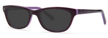 Zenith 73-48 Sunglasses in Purple