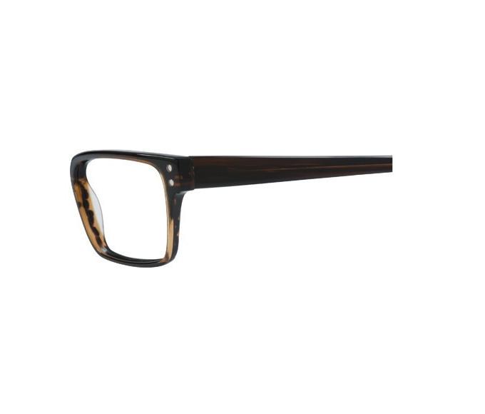 Zenith 72-50 Sunglasses in Brown