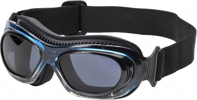 SFE Collection Sports Goggles