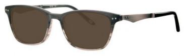 Colt CO3519 Sunglasses in Black