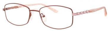 Ferucci FE1772-50 Glasses in Bronze