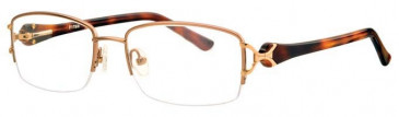 Ferucci FE1750 Glasses in Gold
