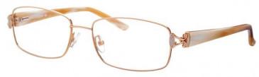 Ferucci FE1740 Glasses in Gold