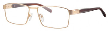 Ferucci FE2008 Glasses in Gold