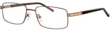 Ferucci FE2005 Glasses in Bronze