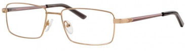 Ferucci FE2003 Glasses in Gold