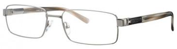 Ferucci FE980 Glasses in Silver