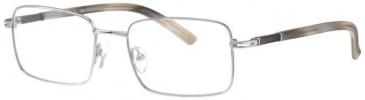 Ferucci FE967-50 Glasses in Silver