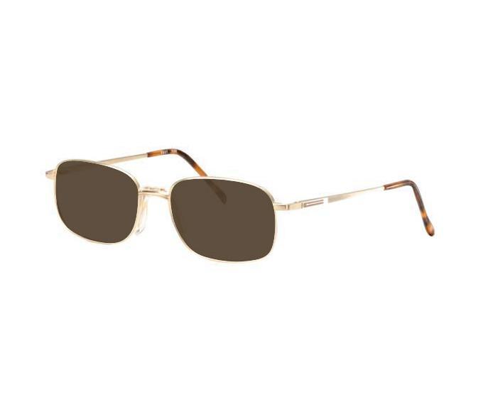 Ferucci FE627 Sunglasses in Gold/Silver