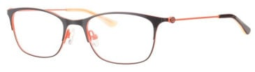 Rip Curl VOM205 Glasses in Black/Orange