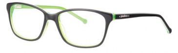Schott SC4017 Glasses in Black/Green