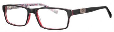 Schott SC4013 Glasses in Black