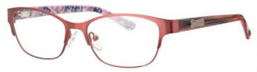 Schott SC4011 Glasses in Pink