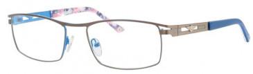 Schott SC4007 Glasses in Gunmetal/Blue