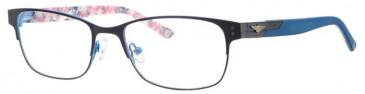 Schott SC4006 Glasses in Navy