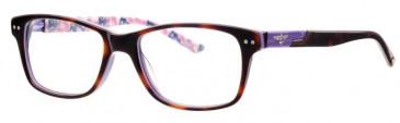 Schott SC4004 Glasses in Havana/Lilac