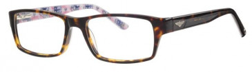 Schott SC4003 Glasses in Havana