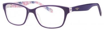 Schott SC4001 Glasses in Purple
