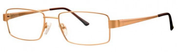 Visage VI364 Glasses in Gold