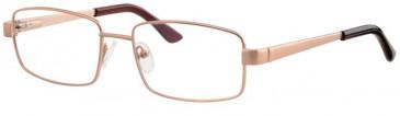 Visage VI427-53 Glasses in Gold