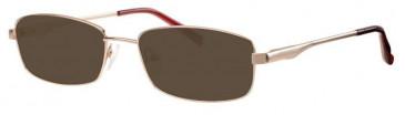 Visage VI404-55 Sunglasses in Gold
