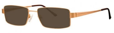 Visage VI364 Sunglasses in Gold