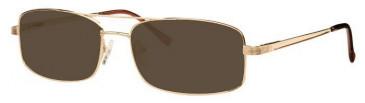 Visage VI350-58 Sunglasses in Gold