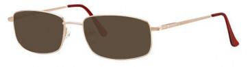 Visage VI280 Sunglasses in Gold