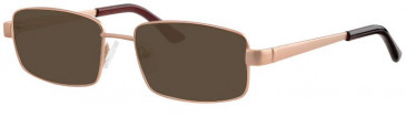 Visage VI427-53 Sunglasses in Gold