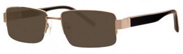 Visage VI356 Sunglasses in Gold