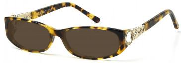 Ca Va CV10 Sunglasses in Brown