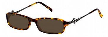 Ca Va CV03 Sunglasses in Brown