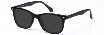 DiMarco DM115 Sunglasses in Black