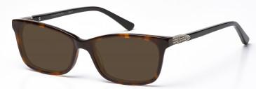 Nakamura NK17 Sunglasses in Demi Brown