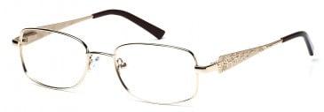 Rafaelle RAF101 Glasses in Gold