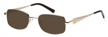 Rafaelle RAF101 Sunglasses in Gold