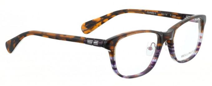 Bellinger BUMPER-2-268 Glasses in Brown/Purple Pattern