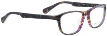 Bellinger FALLON-241 Glasses in Brown