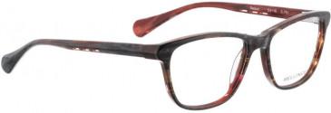 Bellinger SALOON-262 Glasses in Brown