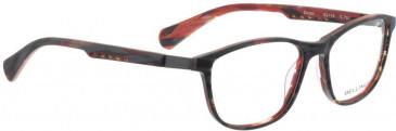 Bellinger ZIRCON-245 Glasses in Brown/Blue Pattern