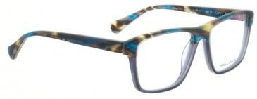 Bellinger PIT-4-402 Glasses in Matt Blue/Brown Pattern