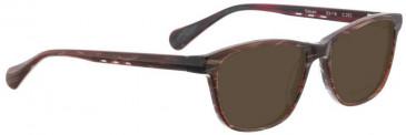 Bellinger SALOON-262 Sunglasses in Brown