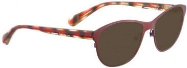Bellinger SUEELLEN-2848 Sunglasses in Brown