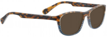 Bellinger FALLON-241 Sunglasses in Brown